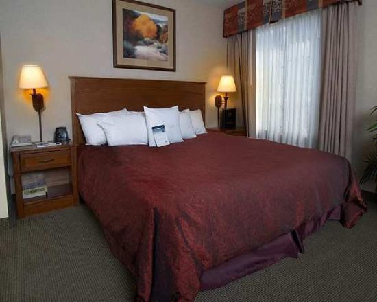 Homewood Suites by Hilton Albuquerque - Journal Center: Guest Room