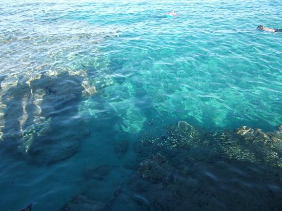 Strand Beach and Golf  Resort Taba Heights: snorkeling further along beach