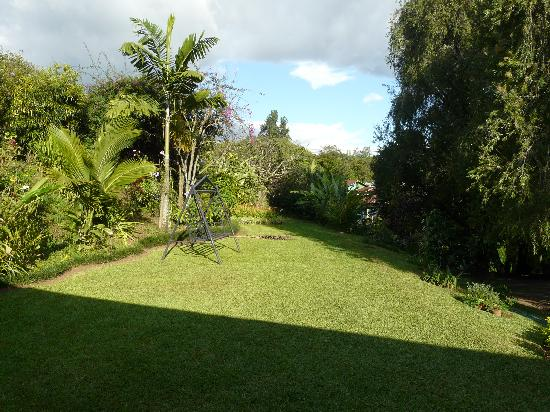 Villa Pacande Bed & Breakfast : Jardín hotel