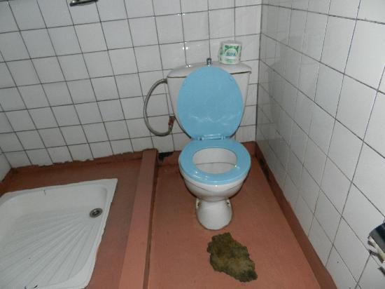 Gisakura Guest House : toilettes ...