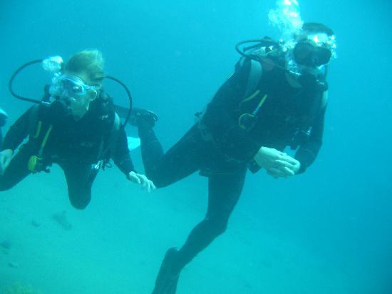 Aqua Divers: us