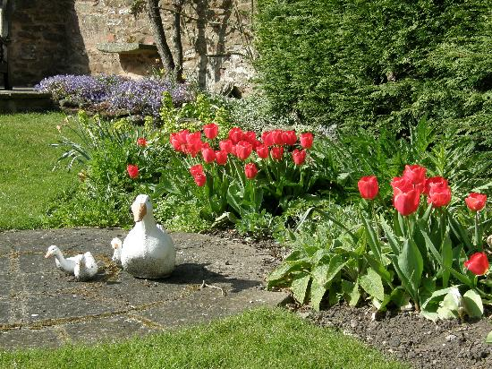 Lea House Bed & Breakfast: Garden in Spring