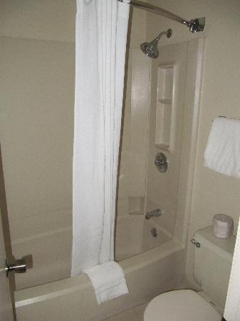 Best Western Plus Como Park Hotel: Bathroom