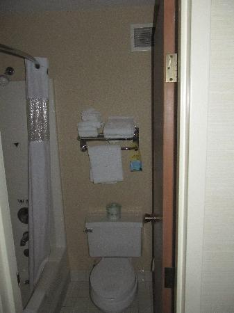 Days Hotel University Ave SE : Bathroom