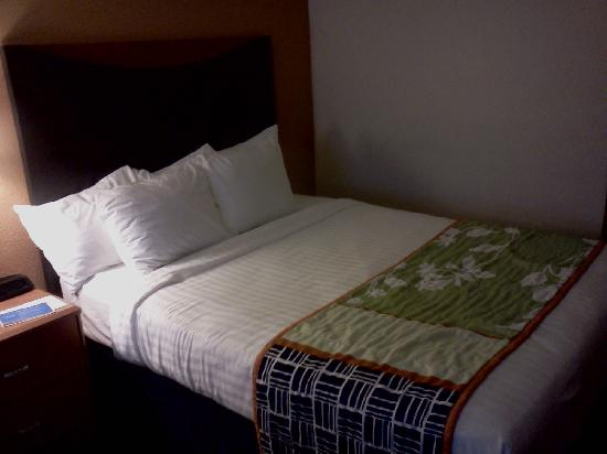 Fairfield Inn & Suites Minneapolis-St. Paul Airport: Queen Bed in a 2 Queen room