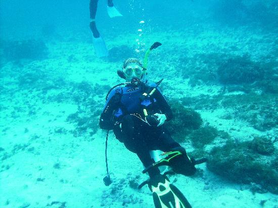 Squalo Adventures PADI Dive Resort #22312 : Hangin out under water