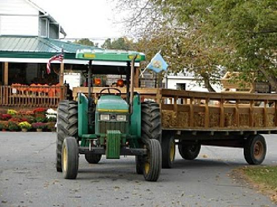 Fifer Orchards - Farm, Country Store and CSA: Fifer hay rides