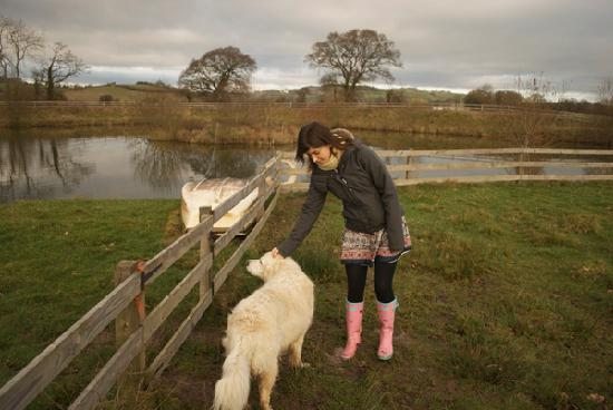 Spillers Farm: Merryck the friendly dog will be your guide around the lake