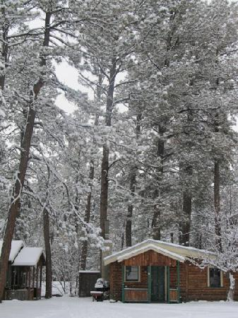 Casey's Cabins: 12/23/11