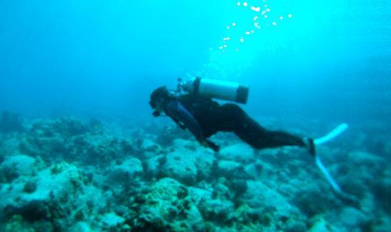 Kona Diving Company: DiscoveringSCUBA... again ;)