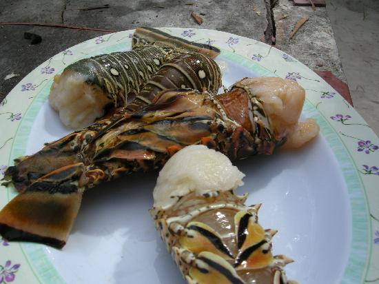 Rancho Caphe Ha: lobster from Punta Allen