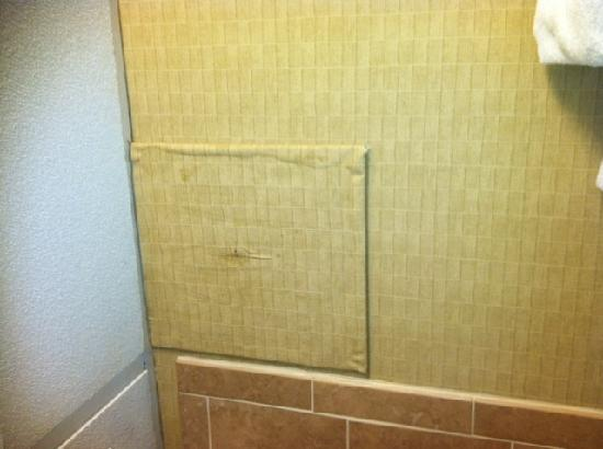 Holiday Inn Williamsport: Bubbling Panel in the Bathroom