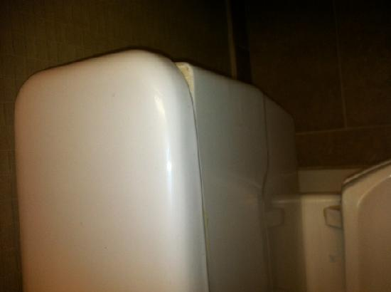 Holiday Inn Williamsport: Mismatched Toilet Tank Lid
