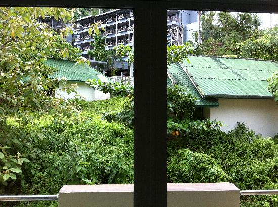 Pranang Flora House: View from Double Room