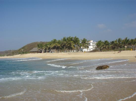 Jalisco, México: looking from the beach
