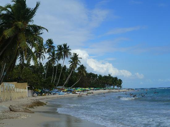 Playa Esmeralda Beach Resort: playa guayacanes