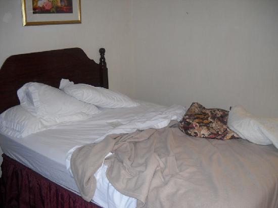 Econo Lodge: The beds were a bit small, but sheets clean