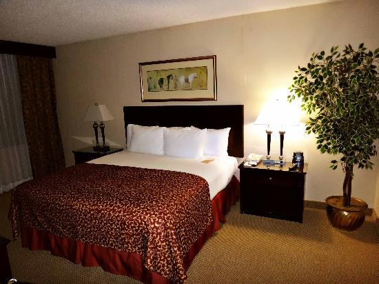 Hilton Houston Plaza/Medical Center: Bedroom