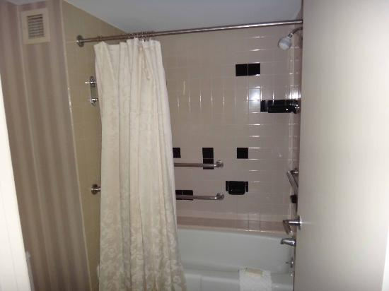 Hilton Houston Plaza/Medical Center: Bathroom