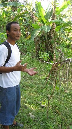 Buleleng, Indonesia: Putu
