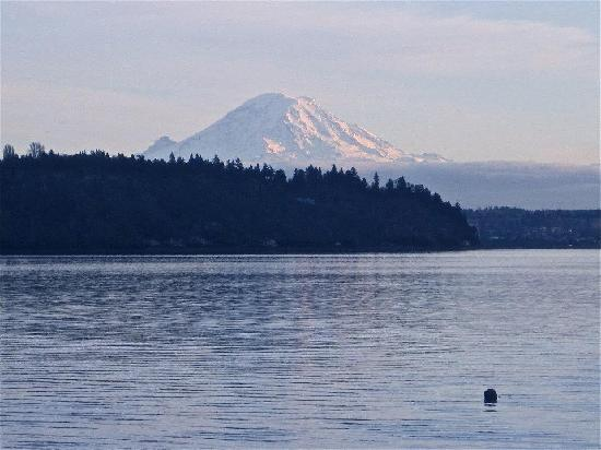 Olympic View Bed and Breakfast Cottage: Mt. Rainier is a must see.