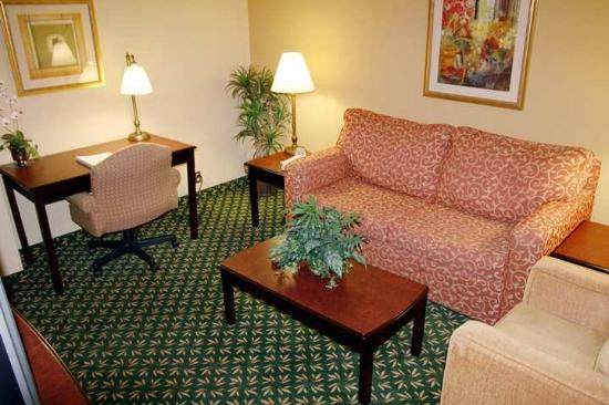 Hampton Inn Dallas/Ft. Worth Airport South: Suite