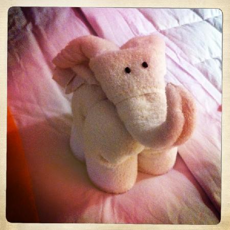 Casa Cuitlateca: special touches :)  towel elephant