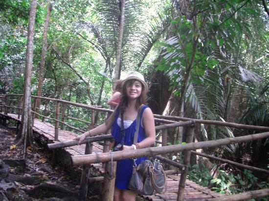 Hidden Valley Tour (Manila): Bamboo walkways.