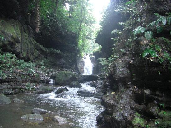 Hidden Valley Tour (Manila): Hidden falls.