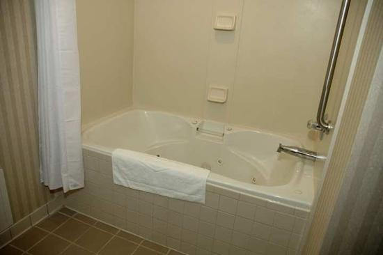Hampton Inn Elizabethtown: Suite