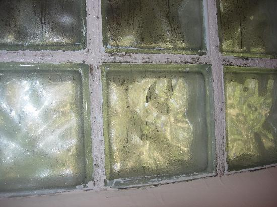Taos Country Inn: mold around glass block in shower