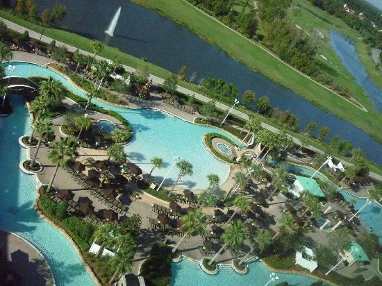 pool area picture of hilton orlando bonnet creek. Black Bedroom Furniture Sets. Home Design Ideas
