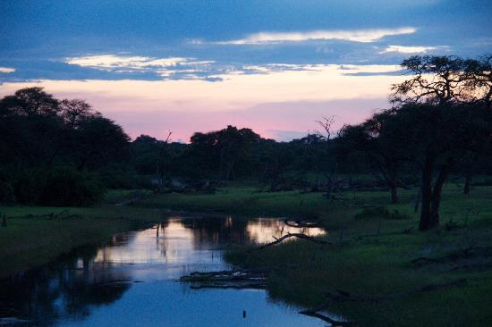 Belmond Savute Elephant Lodge: sunset