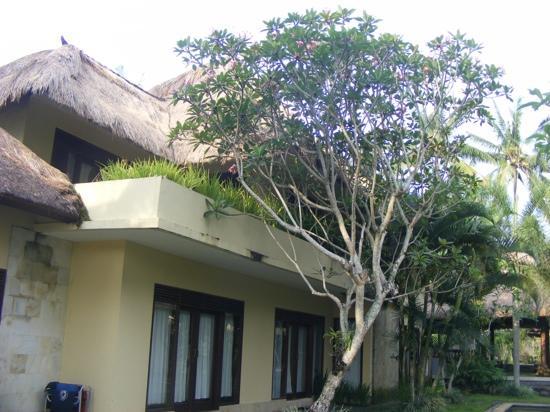 Villa Areklo: lovely...