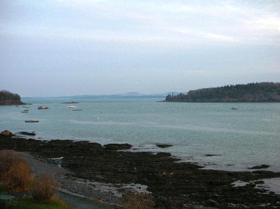 Bar Harbor Inn: View of the harbour from our room