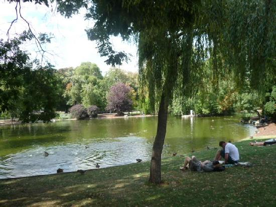 Hotel Am Parkring: The park across
