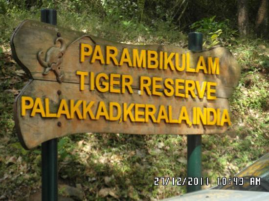 Parambikulam entry point - Picture of Indira Gandhi Wildlife