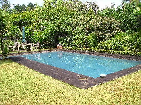 Thorold Country House: The gorgeous pool