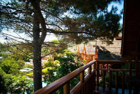Abalone Lodges: View from the balcony