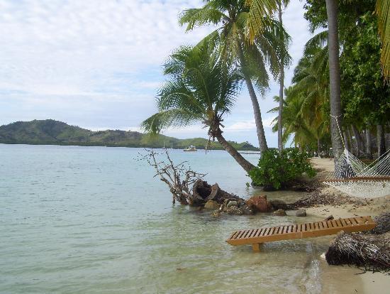 Plantation Island Resort: High Tide