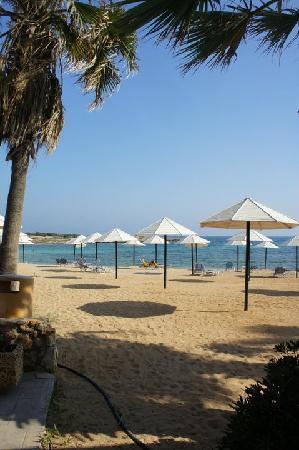 Dome Beach Hotel & Resort: .The Dome Beach hotel