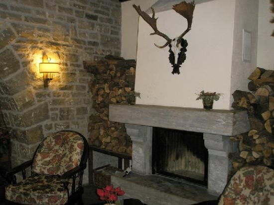 Landidyll Wald und Sporthotel Polisina: Hotelhalle mit Kamin
