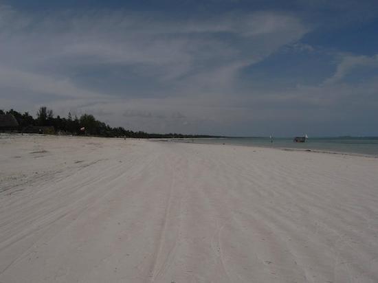 Next Paradise Boutique Resort : spiagga
