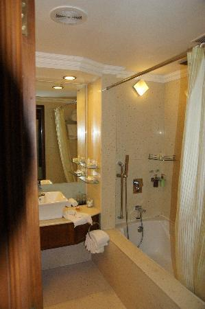 Radisson Blu Hotel GRT Chennai: Good shower