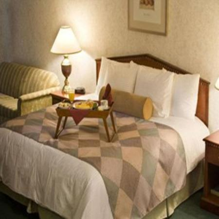Medallion Hotel: Guest Room