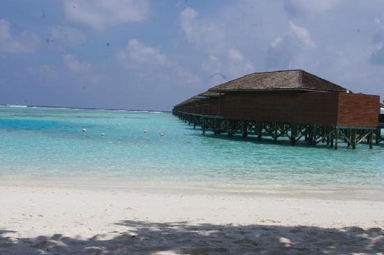Meeru Island Resort & Spa: vue sur pilotis