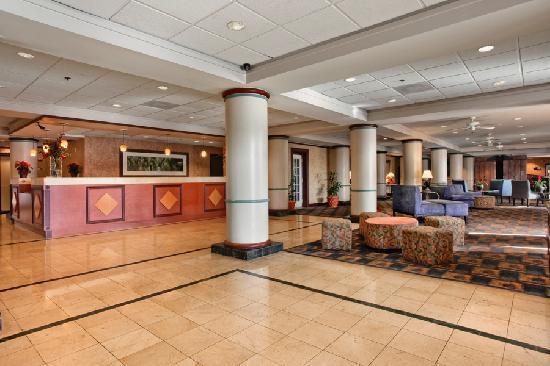 Comfort Inn Maingate: Hotel Lobby