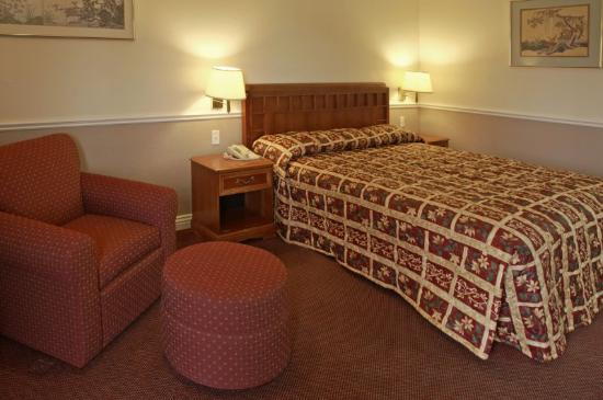 Legacy Inn and Suites: King Standard