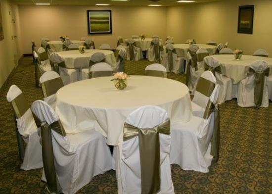 Comfort Inn Livonia: Meeting Room