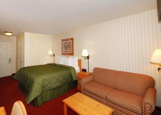 Comfort Inn Half Moon Bay: CABGstrm Bedsleepersofa